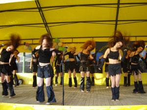 Laukinis šokis